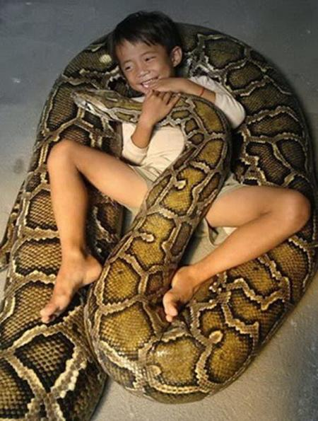 Niño de 8 años jugando con una anaconda