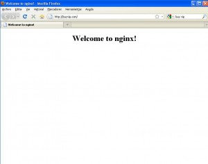 Welcome to nginx! en buyvip.com