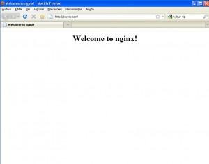 Welcome to nginx! en buyvip.com