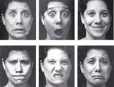 Las expresiones del rostro