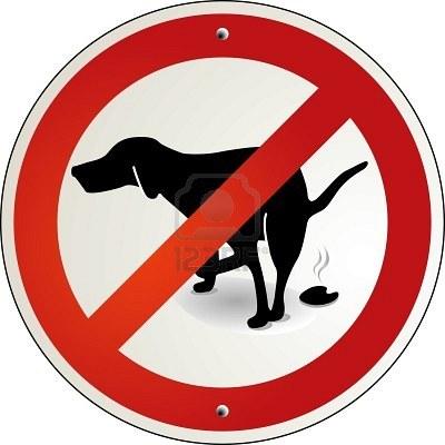 Los excrementos de mascota pueden generar muchos problemas