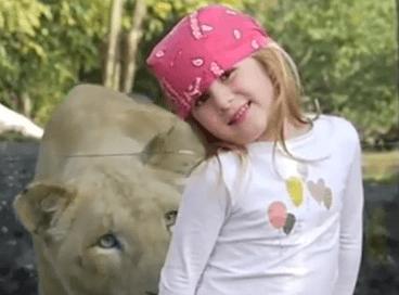 El encuentro inesperado entre una niña y una leona