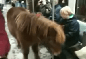 Una rubia con su poni en el metro de Berlín