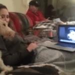 Los perros que hacen videoconferencia por Skype