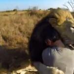 Abrazado por leones