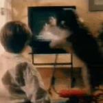 El niño y su perro, una aventura fallida