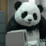 Nadie puede rechazar a un panda