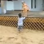 Vídeos divertidos de bebes