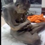 Hallan momia en posición de meditación